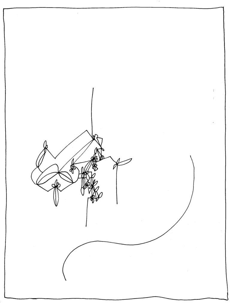 245 - fragment
